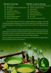 Promo Koi Spa February 2012.pdf