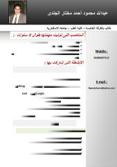 mine cv.pdf